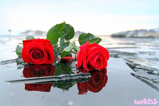 عکس های زیبای رمانتیک عاشقانه