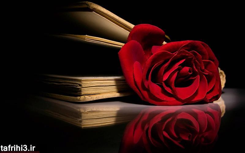 عکس های عاشقانه رمانتیک خاص 93