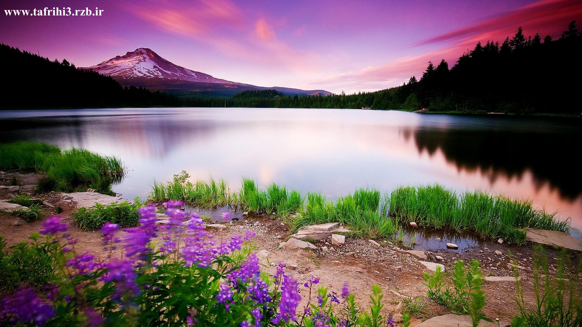 تصاویر زیبا از طبیعت