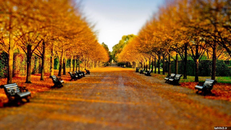 عکس های فصل پاییز با کیفیت اچ دی 2015