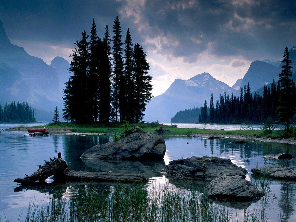 عکس های زیبا طبیعت