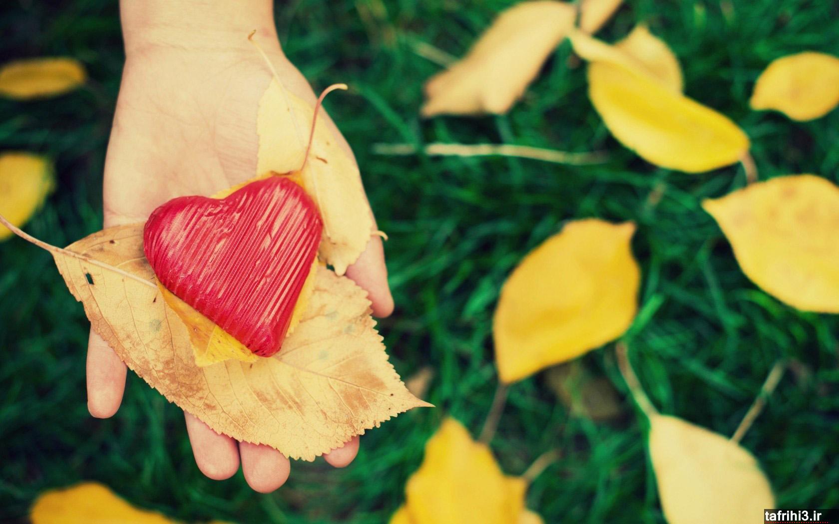 عکس های قلب عاشقانه جدید