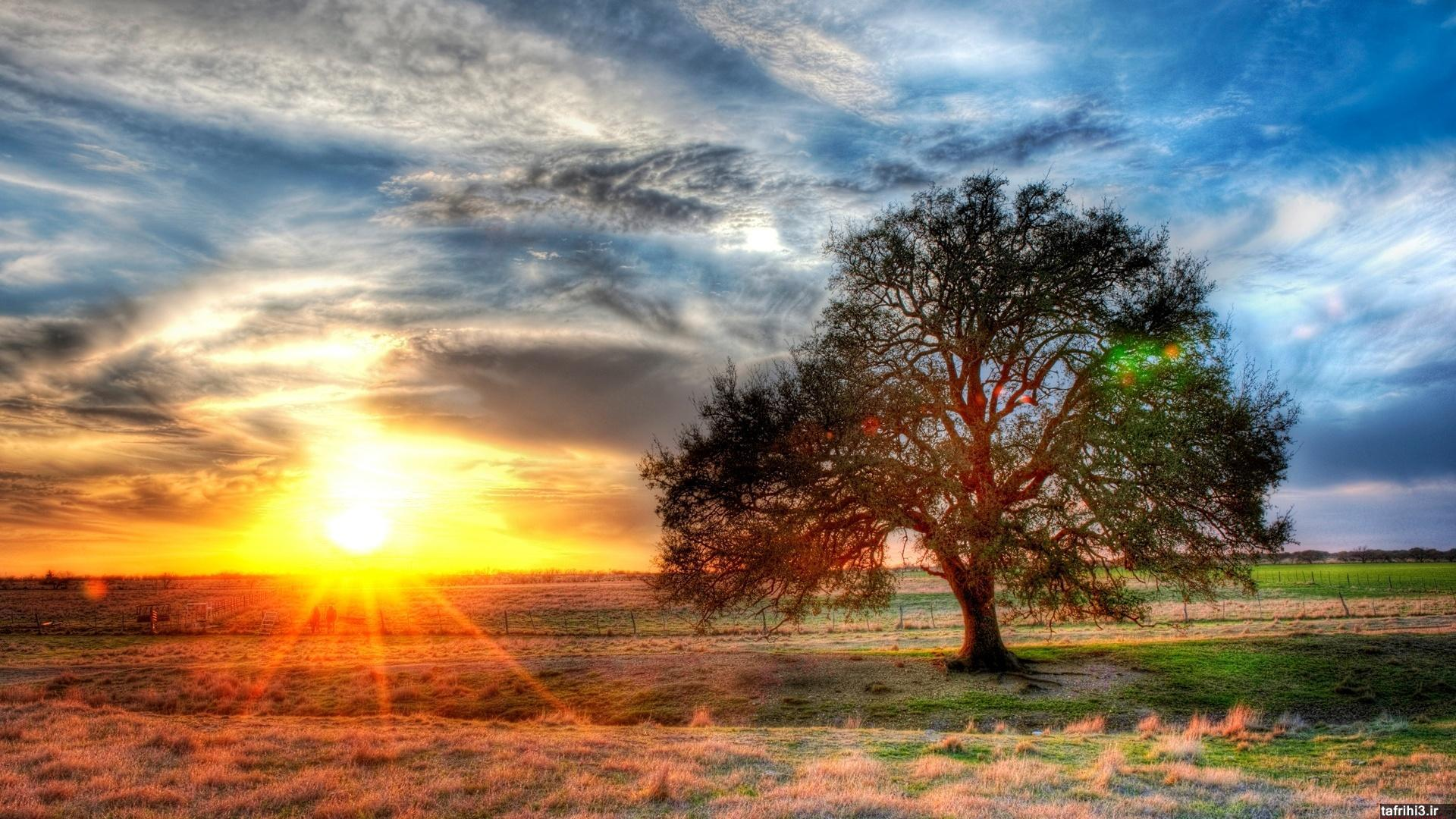 دانلود عکس های طبیعت با کیفیت بالا 2014